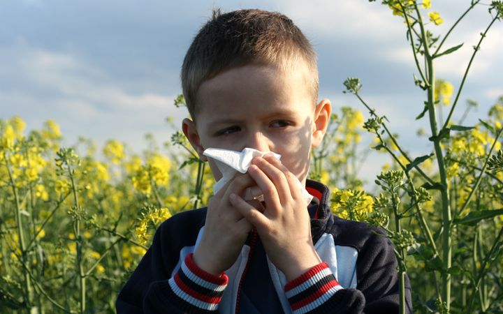 Believe it or not Spring has arrived with the welcome promise of warmer weather after a long hard winter. But if you suffer seasonal #allergies, spring flowers can mean itchy eyes and sniffles. Here are some tips you can use to beat your #SpringAllergies naturally.