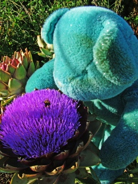 """""""Me and the Bee""""  """"Hello Mr. Bee"""" said Blue  Happy to see You  Must remember to smell the 'artichokes' too ♥  http://www.cafepress.com/bluebearlovesu.324347996"""