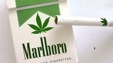 Legális kannabisz cigi jön az áruházakba július 24-től!   HírÚjság