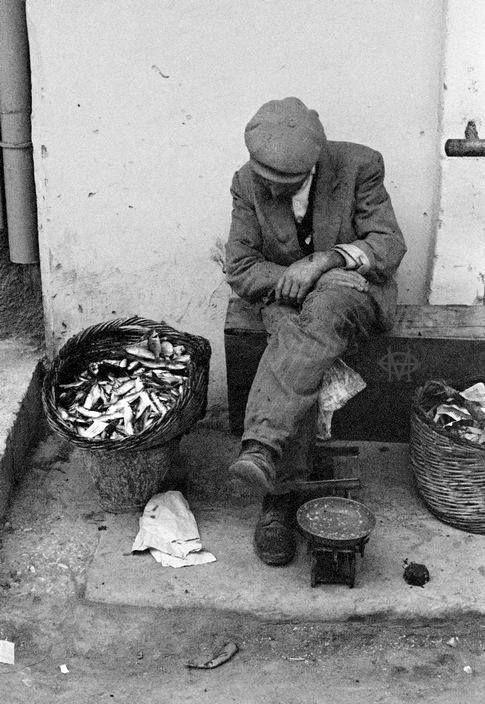 Κέρκυρα, σαρδέλα με το ζύγι στα ψαράδικα. Weighing and selling fresh fish (sardines) in Corfu.