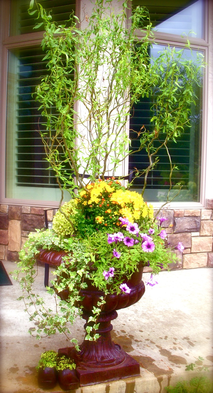 17 Best images about Spring Containers on Pinterest