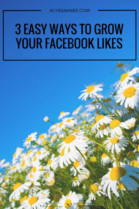 3 Easy Ways to Grow Your Facebook Likes - ALYSSA KNEE