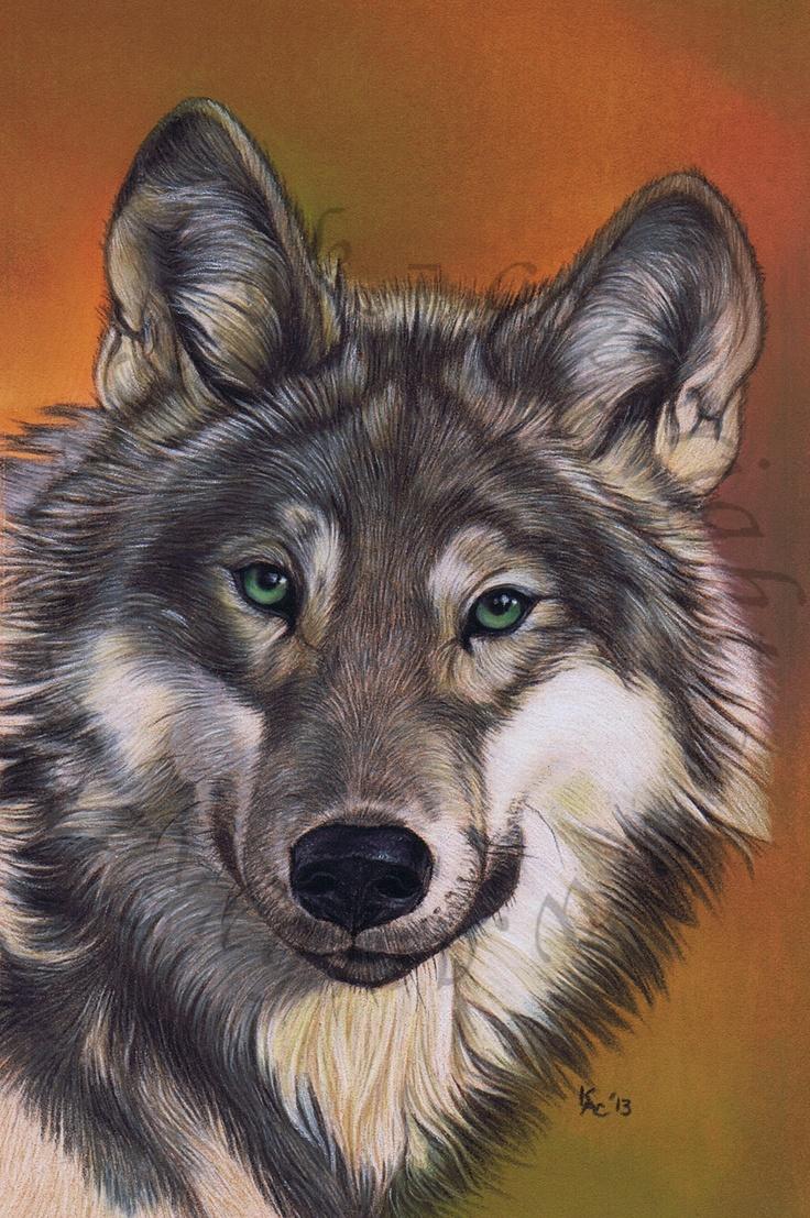 Wolf Wildlife Art in Pastell von Art by Karie-Ann. Internationale Kommissionen willkommen.
