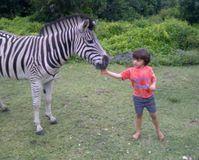 Don't destroy the Mtunzini Zebras