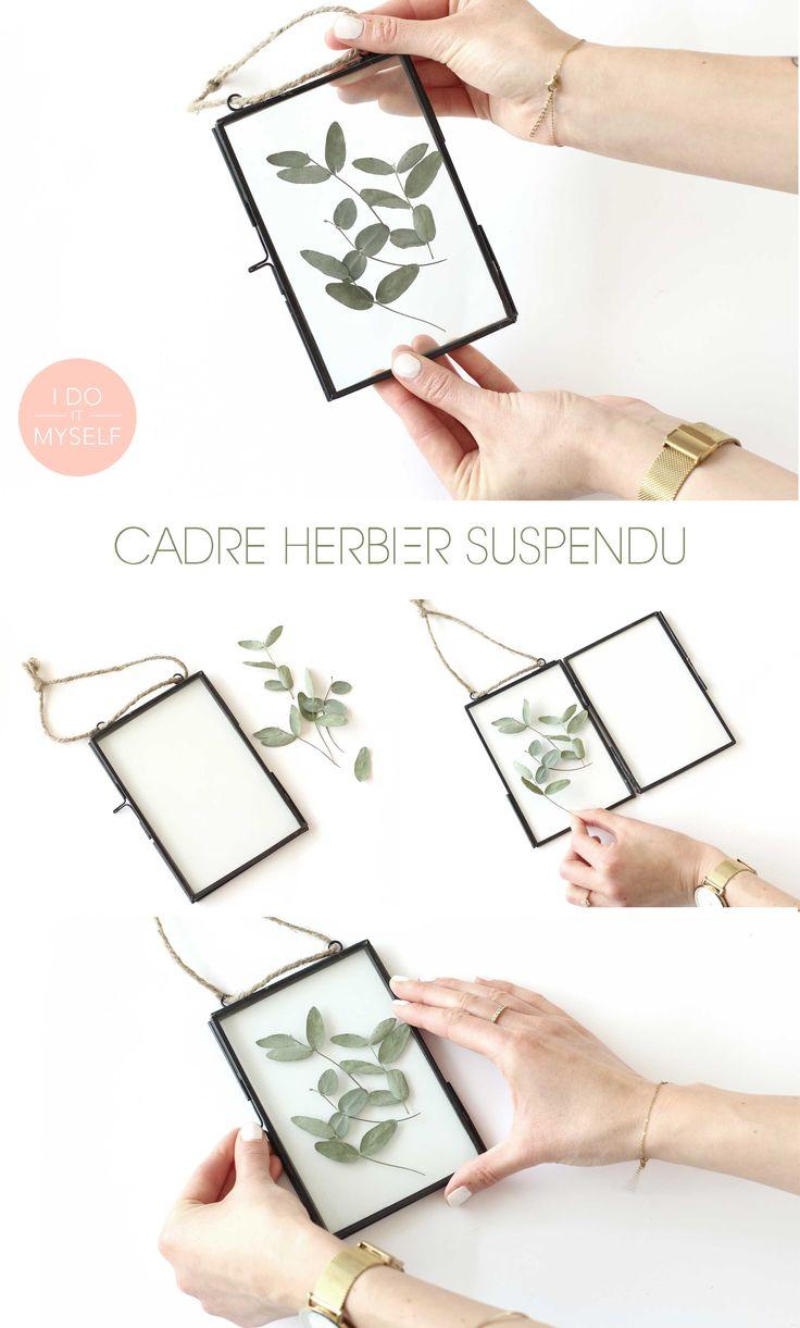 herbarium frame DIY! How to create it easy  DIY Cadre herbier suspendu