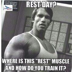 Arnold - Rest Days