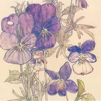 Charles Rennie Mackintosh - Sketchbook - Поиск в Google