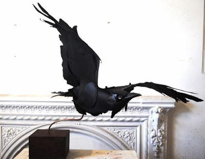 Anna Wili Highfield - crow made from scraps of paper. How amazing is that? I used to have a crow called Merlina so this reminds me of her, except she couldn't fly.