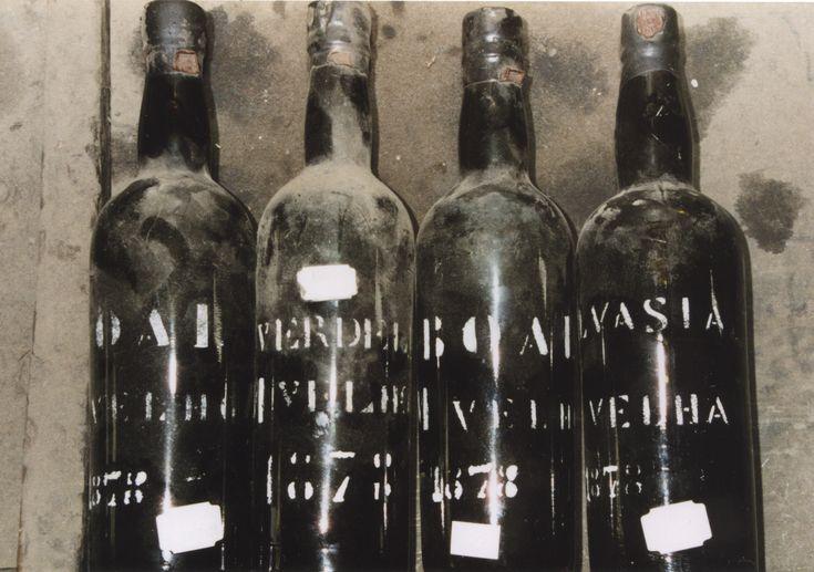 Google Image Result for http://www.cyberroach.com/madeira_v300/about_old_bottles/300-old-bottles-vintage-madeiras.jpg