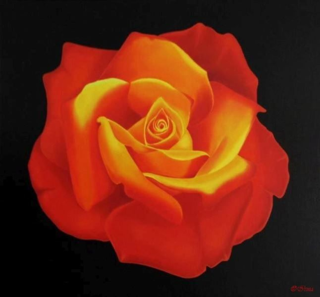 Irma Endrey: Red-yellow rose; oil on canvas