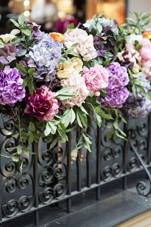 Flowers along a wrought iron fence, so lovely. An inviting garden.