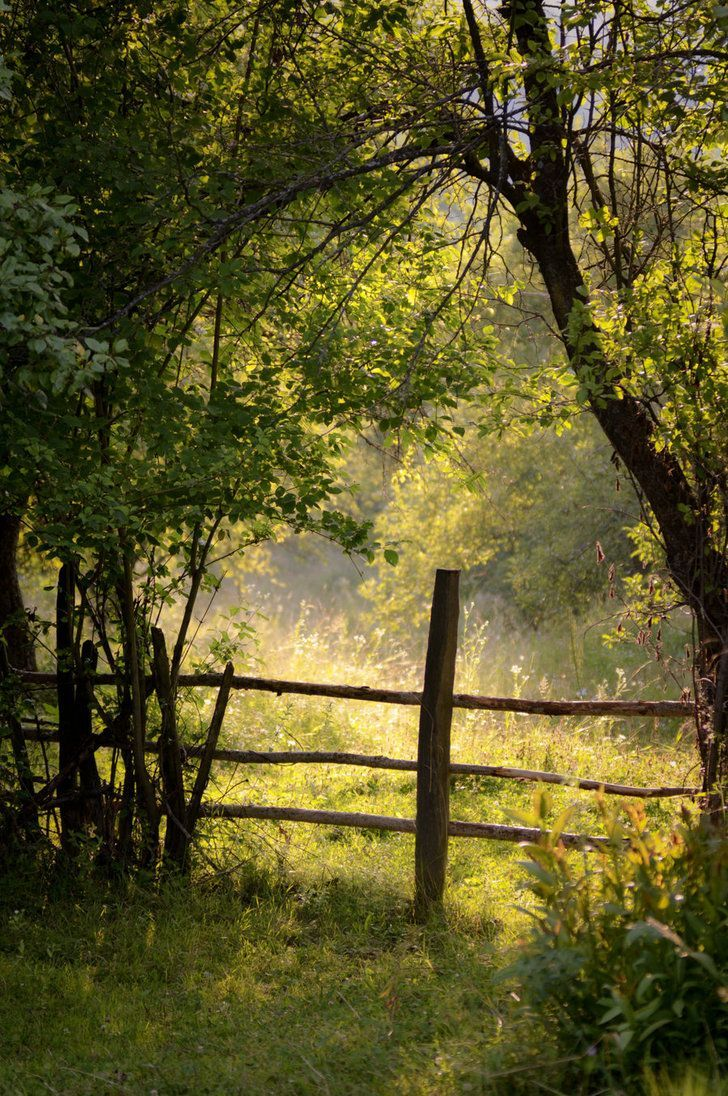 """fences to mend in """"The Last Cowboy"""""""