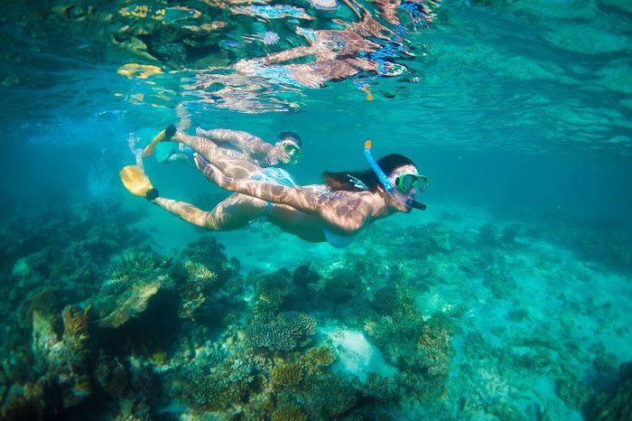 Make sure you visit the other Great reef in Australia - Ningaloo Reef in Western Australia