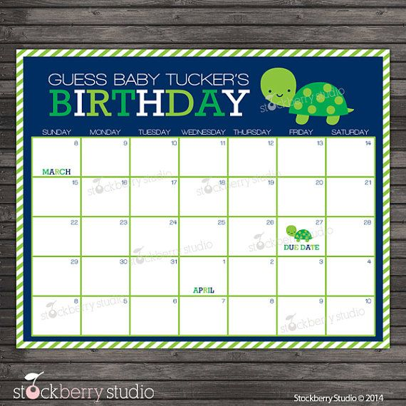 Turtle Baby Shower Guess the Due Date Calendar by stockberrystudio
