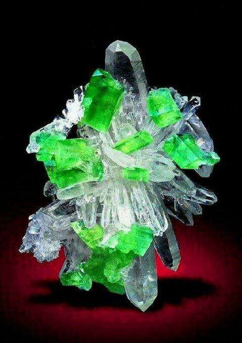 Quartz Cluster With Brilliant Augelite Crystals Distributed Between The From Mundo Nuevo Mine