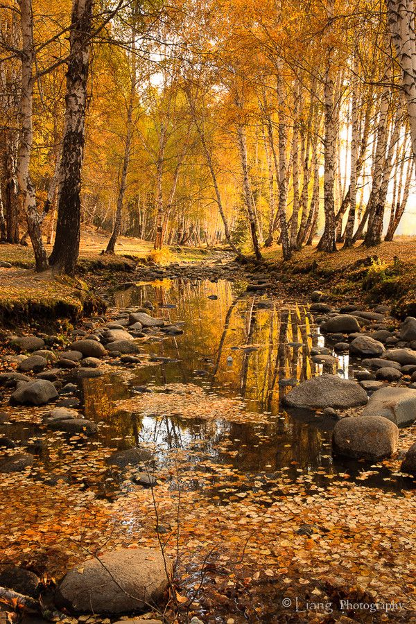 "etherealvistas: ""Autumn Scenery of Hemu (China) by Liang Hsiao """