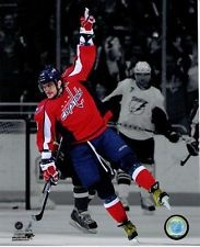 Alex Ovechkin Spotlight Washington Capitals NHL
