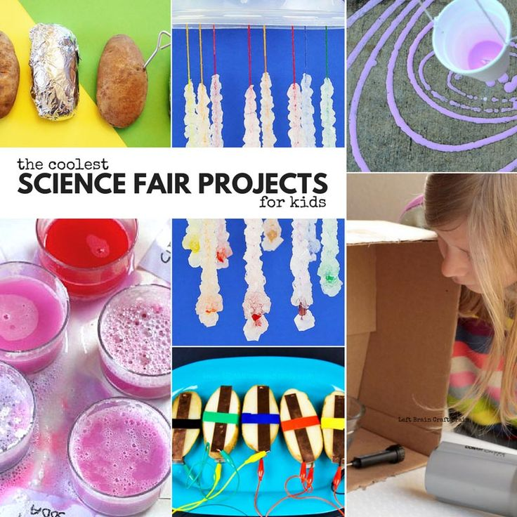 171 Best Project Ideas Images On Pinterest: 70 Best Science Fair Project Ideas Images On Pinterest