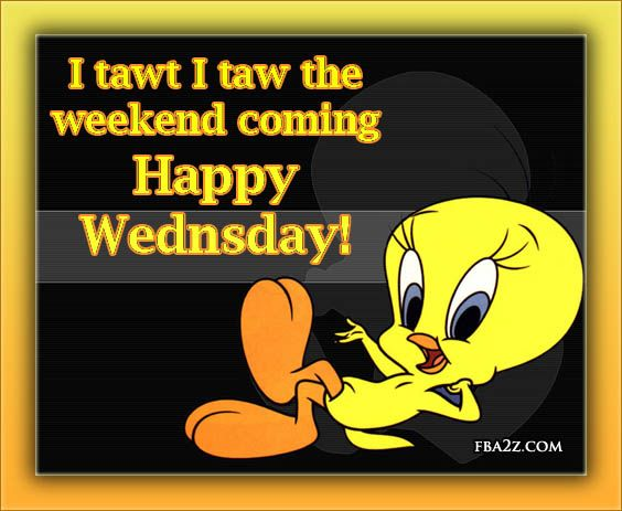 quotes on cartoon on tweety  Facebook Days of The Week Graphics, for sharing...