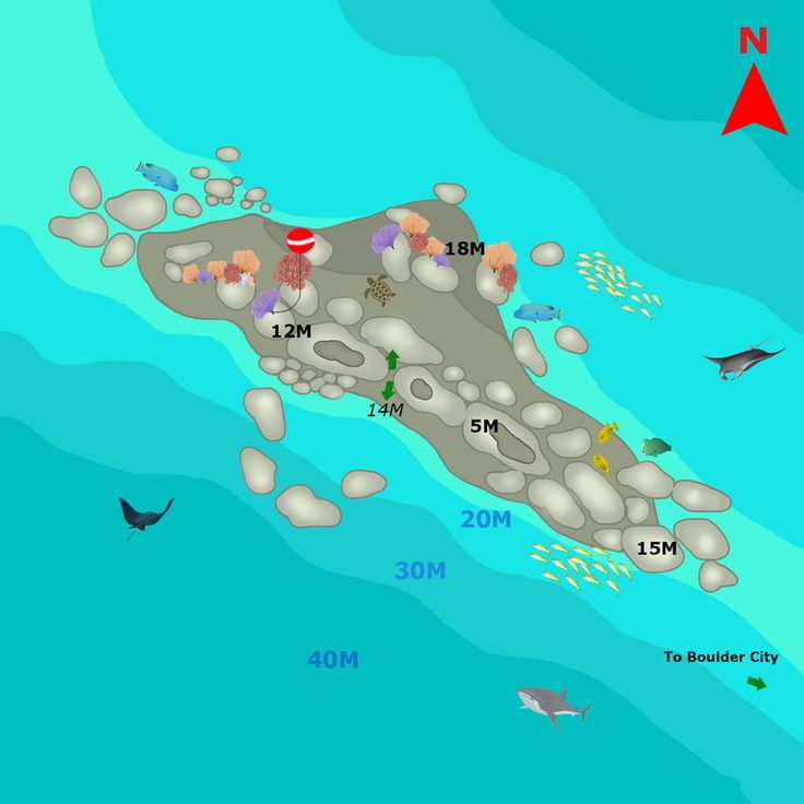 Similan islands dive maps Shark fin reef