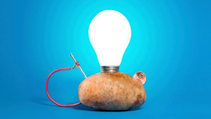 6 Weirdest Ways Scientists Are Using Everyday Things