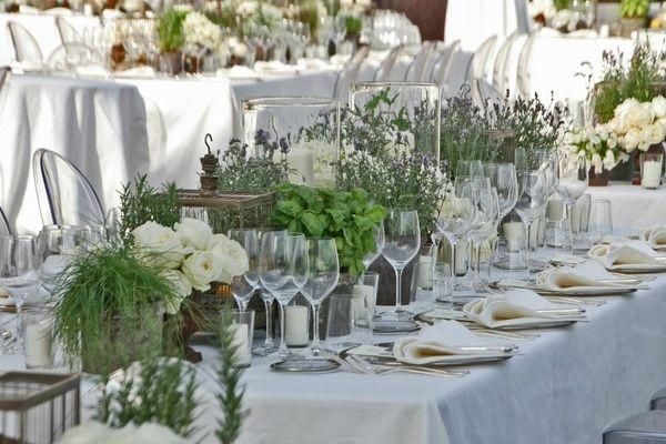 Matrimonio Tema Erbe Aromatiche : Migliori immagini su aromatiche pinterest