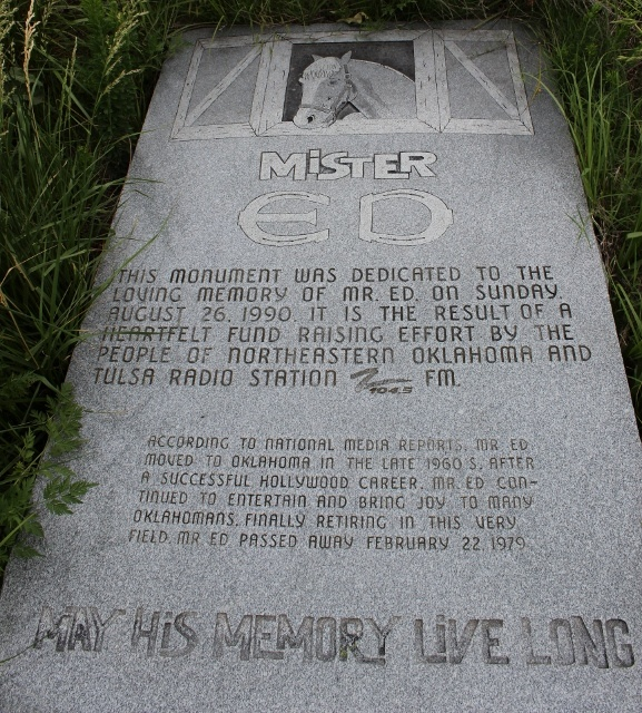 The gravesite of Mr. Ed in Tahlequah Oklahoma. This was NOT easy to find. It's in the backyard of a house that has been repo'd. The stone has fallen over and is in high grass. So sad =(