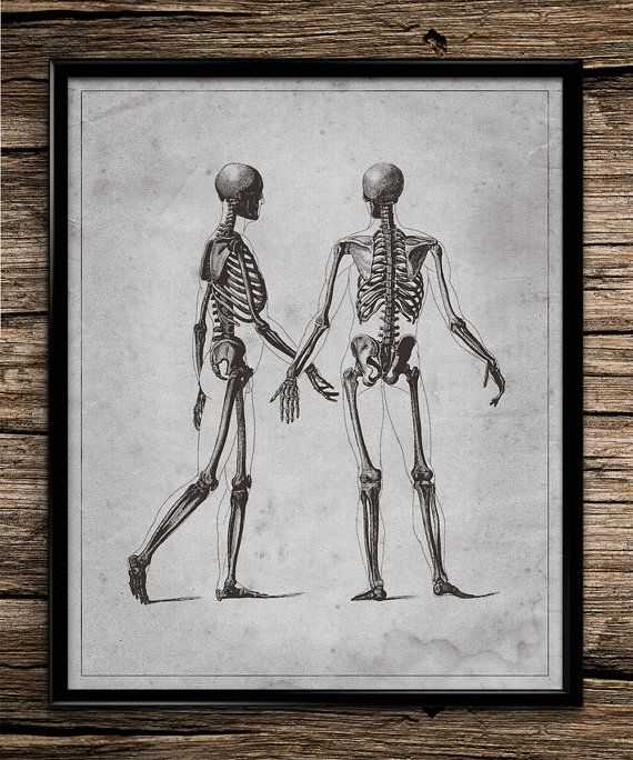 Vintage Skeleton Couple | Vintage Prints | Science Print | Office Decor | Home Decor | Printable Wall Art | 8x10 | Instant Download |