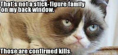That isn't nice Grumpy Cat!