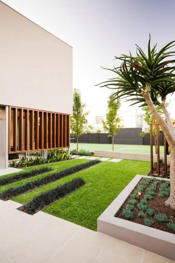 Planted bands through lawn | Welcome to Dragon Trees Australia