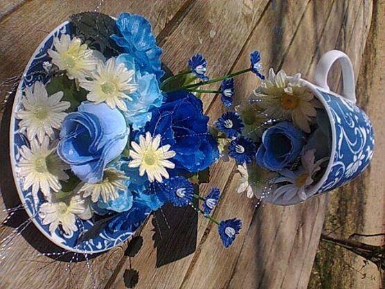 blue flowers
