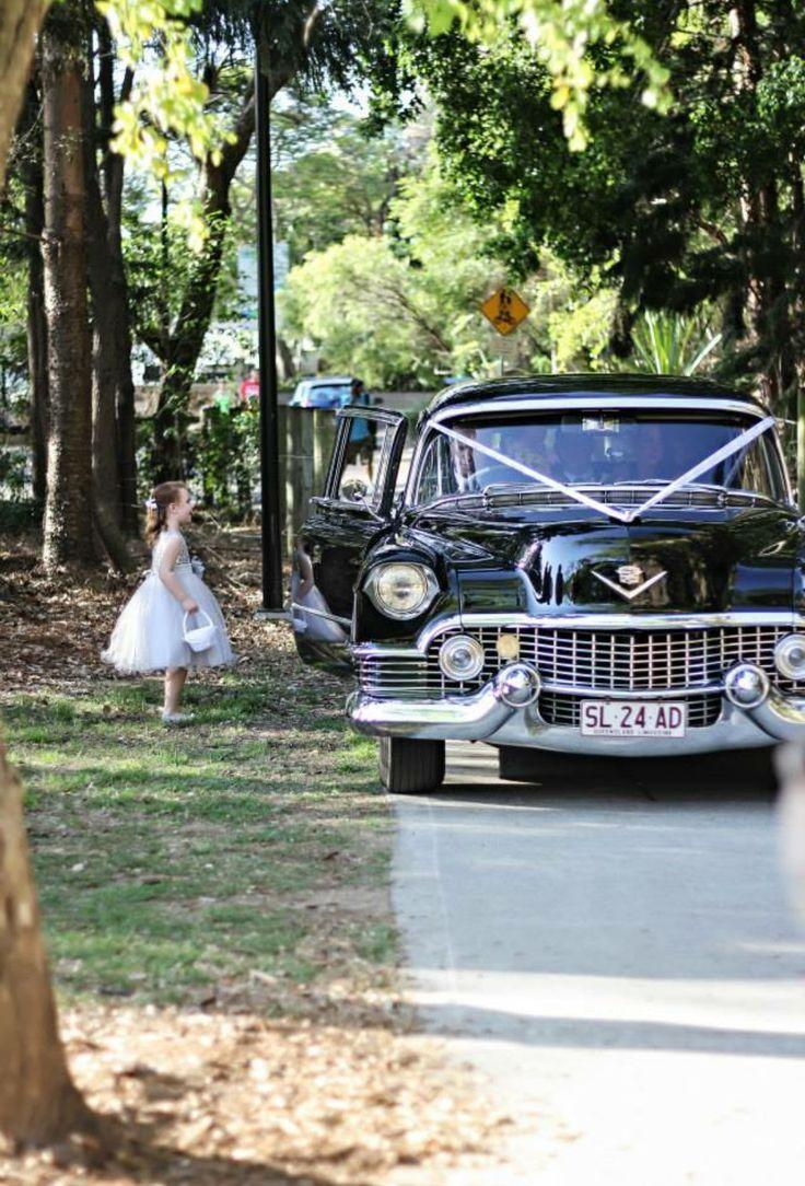 Cadillac 1954 Limousine