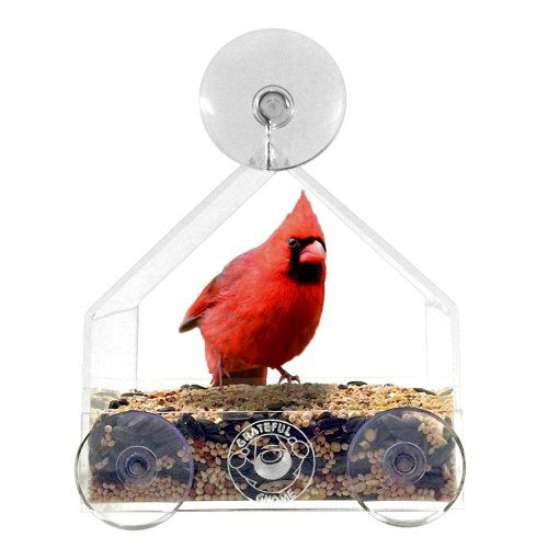 Grateful Gnome House Window Bird Feeder for Cardinals and...