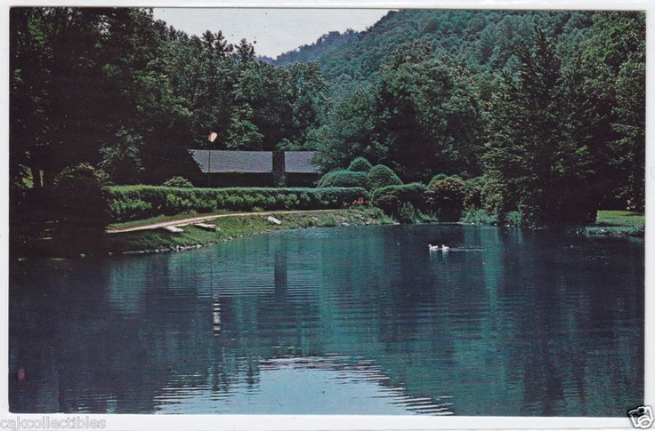 26 best camp gwynn valley brevard nc images on pinterest for Valley mill summer camp