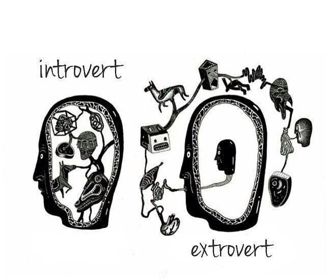 Yes! Thank you! Finally something that properly defines them! People keep saying introverts don't like people or social interaction but nah man that's social anxiety. Anyway, the extrovert thing is pretty accurate too.