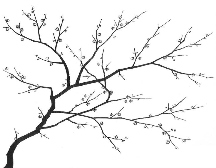 cherry blossom - 20th century, Handmade Wallpaper - Fromental