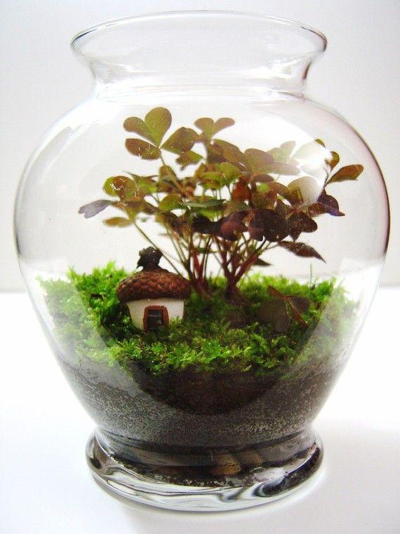 Mini terrarium with tiny hand-made acorn house.
