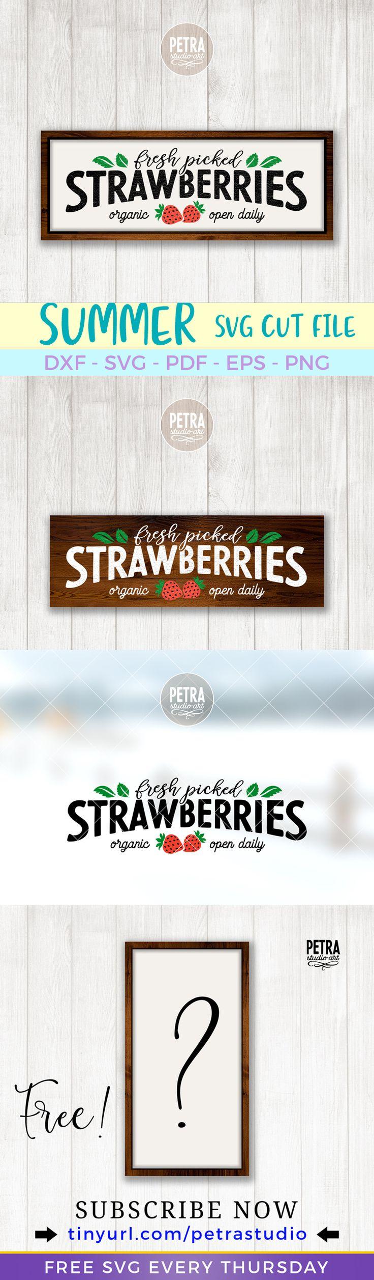 Fresh Picked Strawberries SVG Cut File by Petra Studio Art