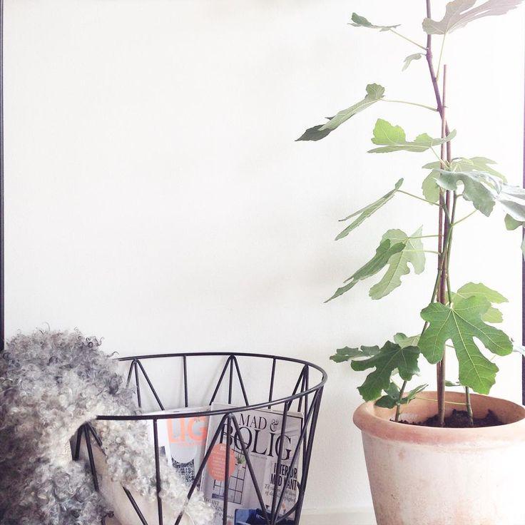 The original ferm LIVING Wire Basket: http://www.fermliving.com/webshop/shop/wire-baskets.aspx