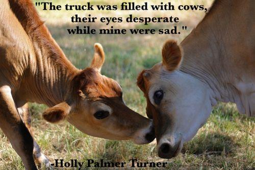 Vegan Quotes