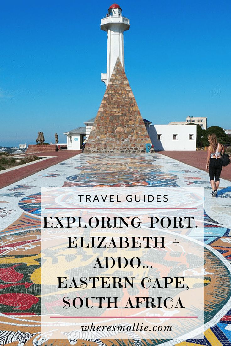 Landing in Port Elizabeth + Adventures in Addo, Eastern Cape South Africa