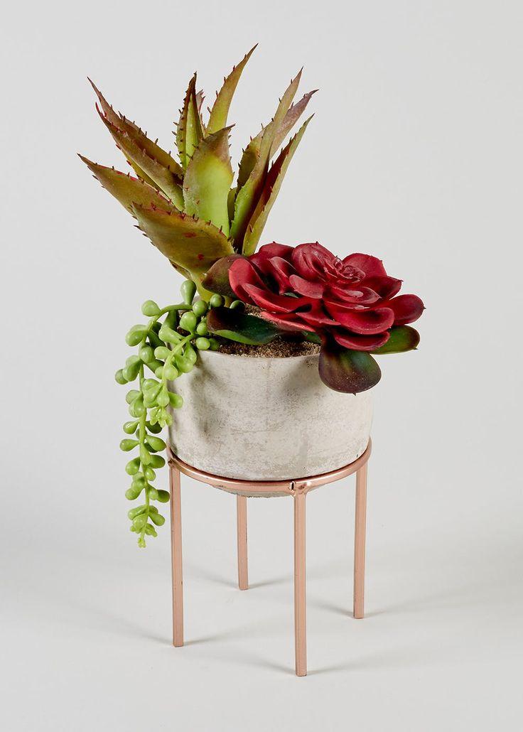 Succulent in Marble Pot