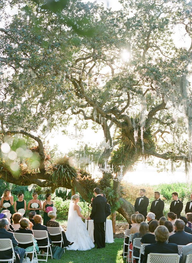 Marie Selby Botanical Gardens Wedding  Read more - http://www.stylemepretty.com/florida-weddings/sarasota/2014/02/10/marie-selby-botanical-gardens-wedding/