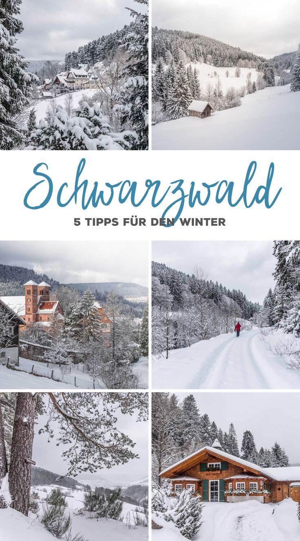 5 Wandertipps für den Schwarzwald im Winter. Rund um Baiersbronn viele …   – Travel