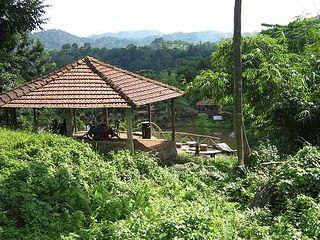Brahmaputra Jungle Resort - Guwahati / Assam