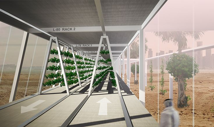 OAXIS: Estructura modular prefabricada busca producir agricultura sostenible en medio del desierto