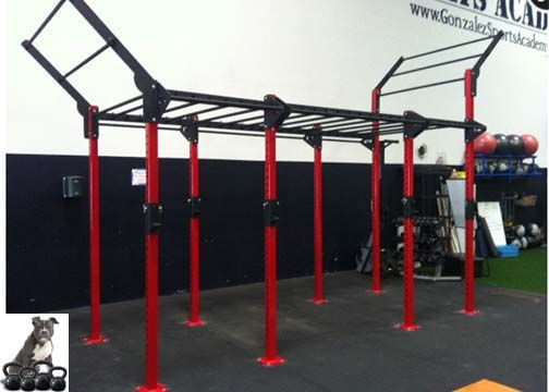 Best crossfit rigs free standing images on pinterest
