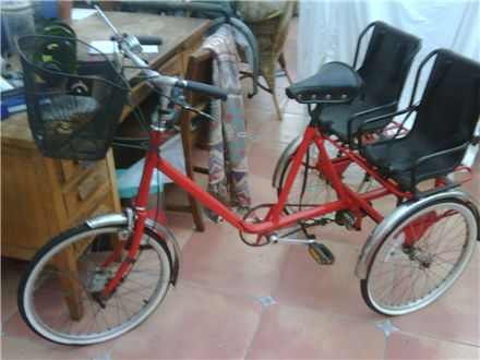 I 100% NEED THIS! Pashley tricycle with child seats