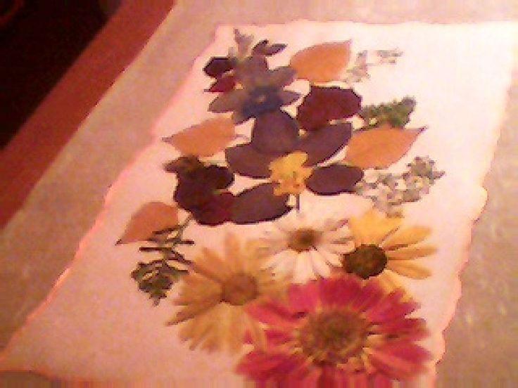 22 best cuadros de flores secas images on Pinterest Dry flowers - flores secas