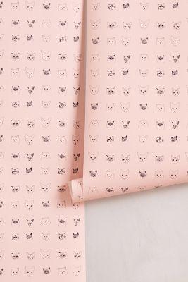 cats wallpaper. www.amamillo.com